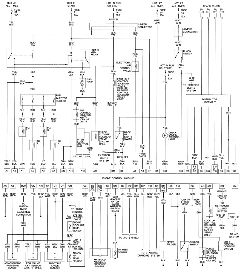 The website says this diagram is for 88-90 d16a6 engines, and they have a  separate diagram for the 91, but there is probably only one different wire.